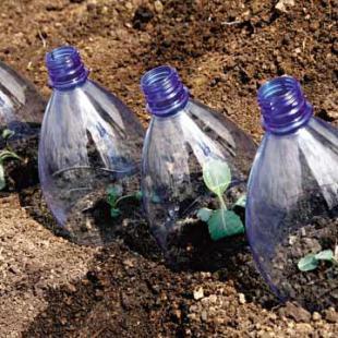 Защита культурных растений от гербицидов