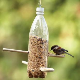 Кормушка для птичек из бутылки