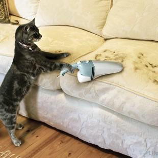 Удаление кошачьей шерсти с мягкой мебели